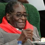 Mugabe Chews US $36m In 10 Months On Travel Alone  in 2016
