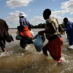 5 Zimbabweans die while crossing Limpopo River to South Africa