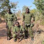 Wildlife rangers in Zimbabwe kill 3 suspected poachers