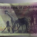 RBZ launches $5 Bond Note