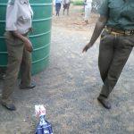 Shock as Bindura school teacher receives snake parcel in a meal mealie bag