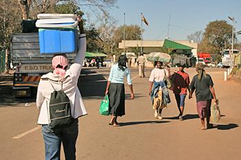 illegal Zimbabweans