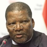 South Africa:There will be no Zimbabwe-style land grabs, says minister