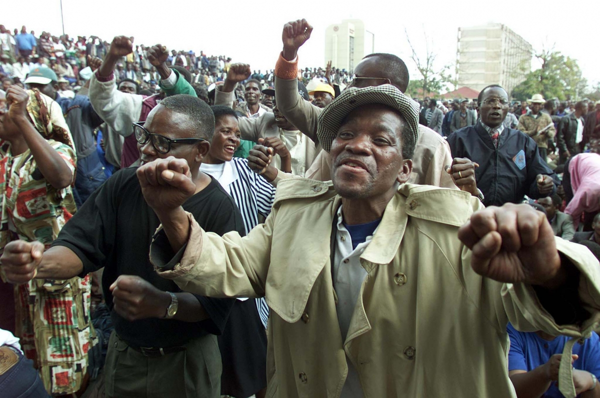Mnangagwa to Hand Over 439 Cattle to Liberation War Veterans
