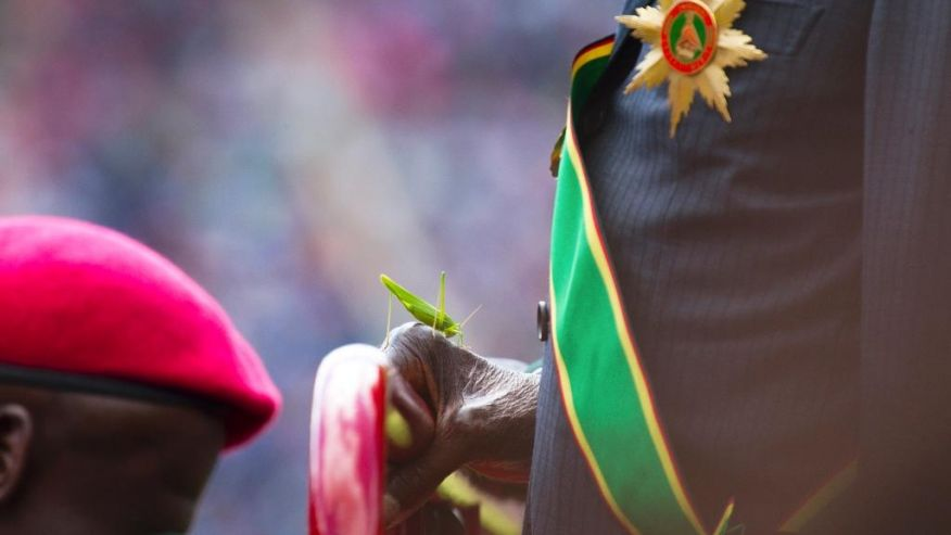 A grasshopper sits on Zimbabwean President Robert Mugabe's hand as he inspects the guard of honour