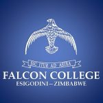 Falcon College manager nabbed for insulting Mugabe