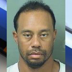 Tiger Woods arrested on Drink Driving  charge in Florida