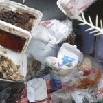 Zimbabwe Bans Plastic Foam Containers to Protect Environment