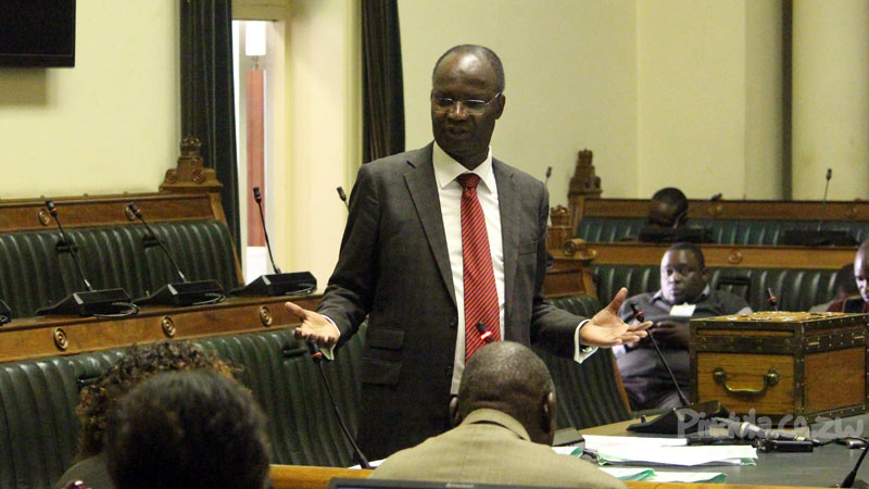 Shock attack ... Jonathan Moyo says Grace Mugabe has no reason to tell him to support Mnangagwa