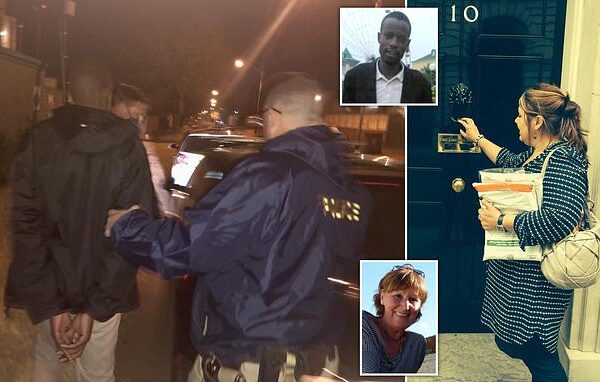 British woman uses Facebook to trap a Zimbabwean man who raped and murdered her aunt