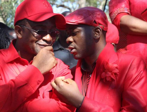 Mwonzora taunts 'babamunini' Chamisa over propaganda, G40 links