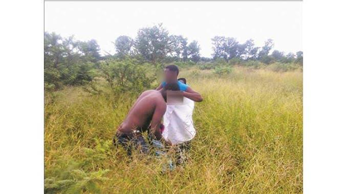 Randy-Couple-Black-Intimate-Sex-Tall-Grass-Bush